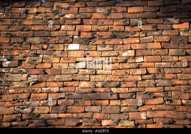 Old clay roof tiles on an ancient french barn stock photo for Buy clay roof tiles online