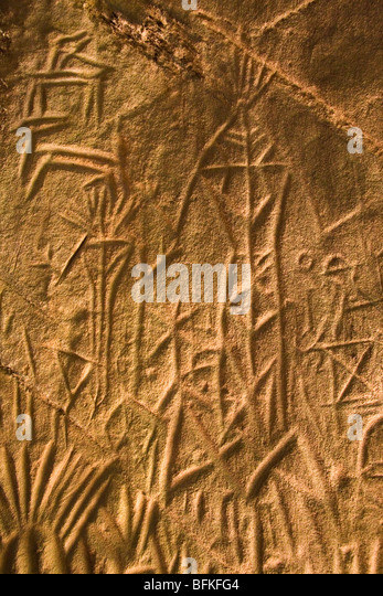 Neolithic stone carvings in edakkal shelter the wayanad