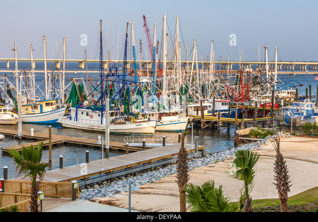 Private and commercial fishing boats docked outside jimmy for Fishing in biloxi ms