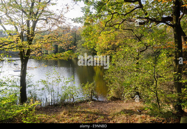 Breaches Pool In Leasowes Park Halesowen In The Autumn Stock Photo Royalty Free Image
