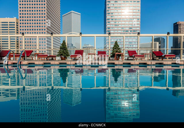 Swimming Pools In Denver : Rooftop swimming pool at the warwick denver hotel
