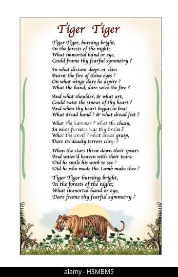 Tiger Tiger, Poem by William Blake. Modern Illustration based on ...